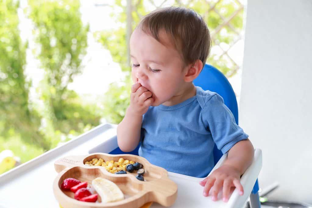 pku-baby-foods